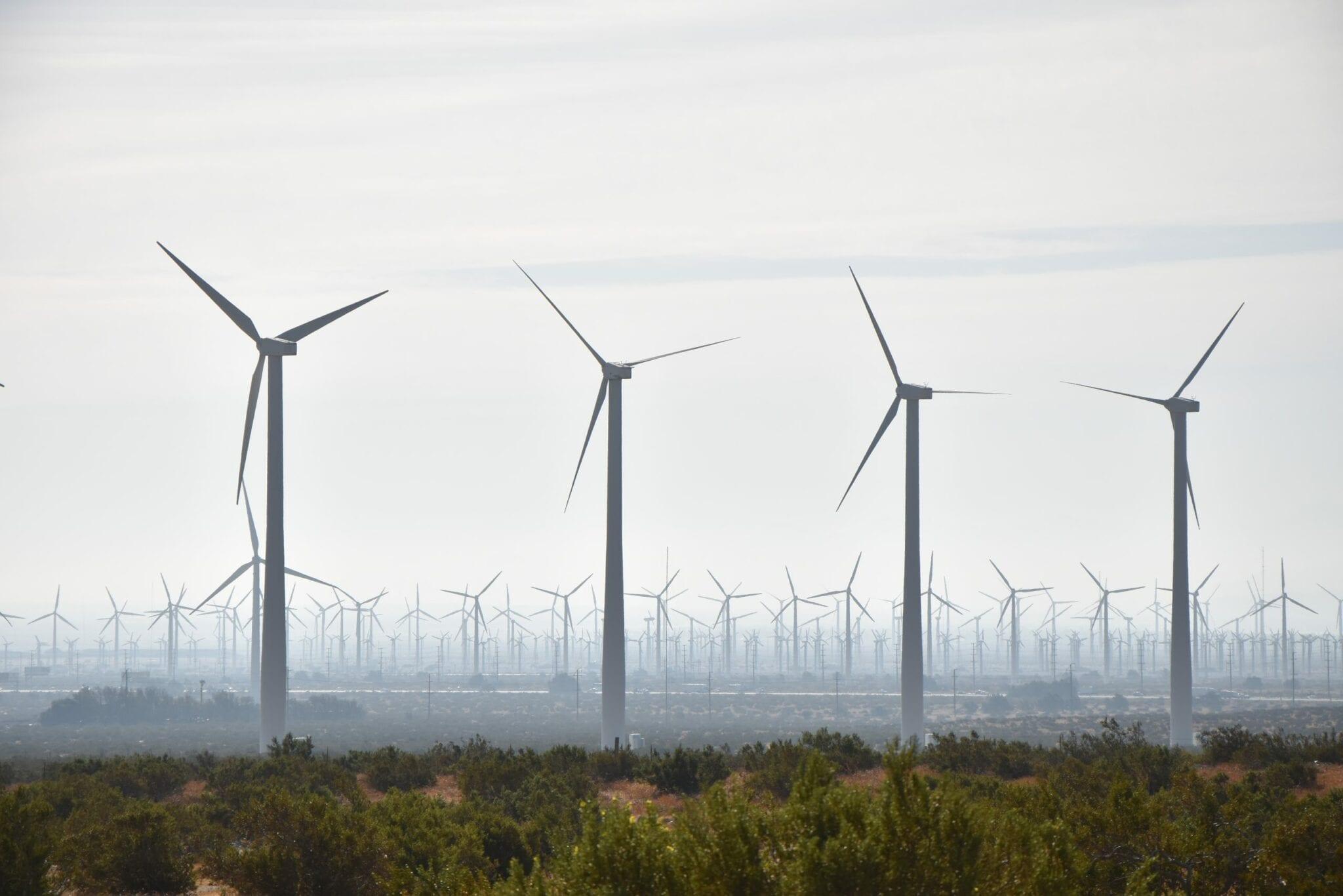 Windtowers 24
