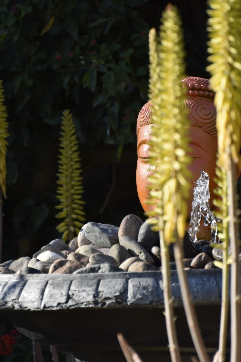 Garden Art : Desert Decorative Arts