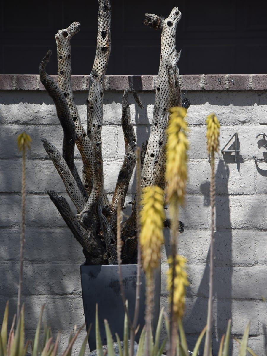Garden Art at Vista Chino II